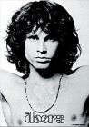 Drapeau THE DOORS - Morrison